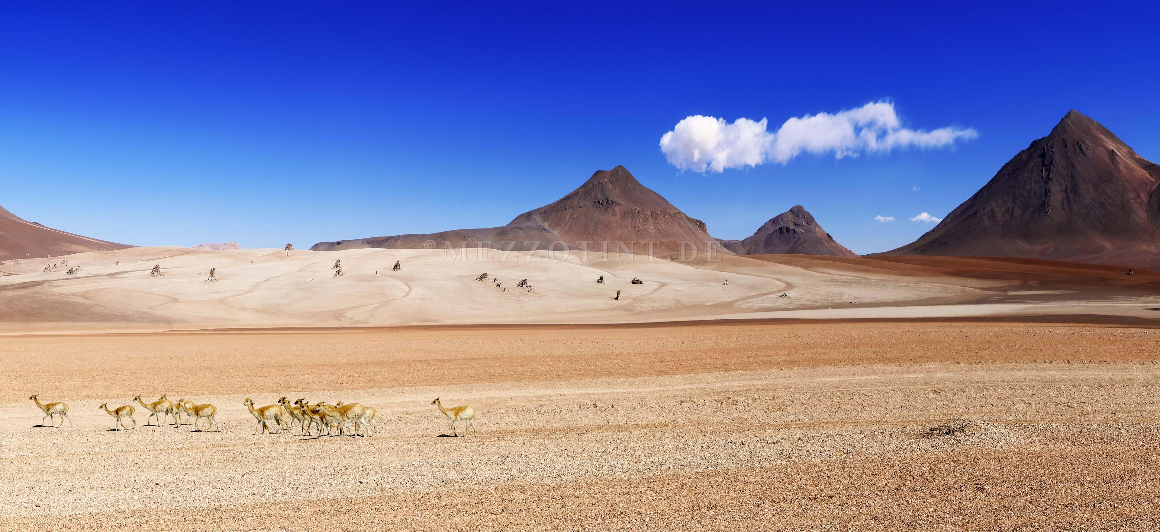 Salvator Dali desert Bolivia